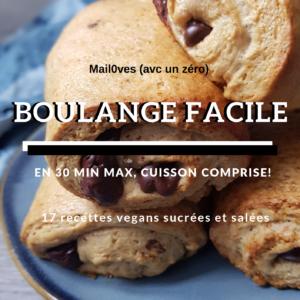 16 recettes (+ 1 bonus) de boulange vegans en 30 minutes cuisson comprise - ebook de mail0ves - mailo fait maison